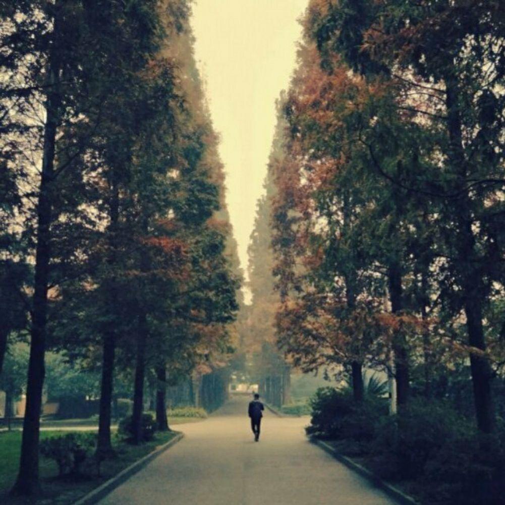 果耶乡风景