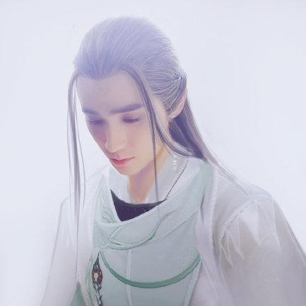 泉菊Ywy