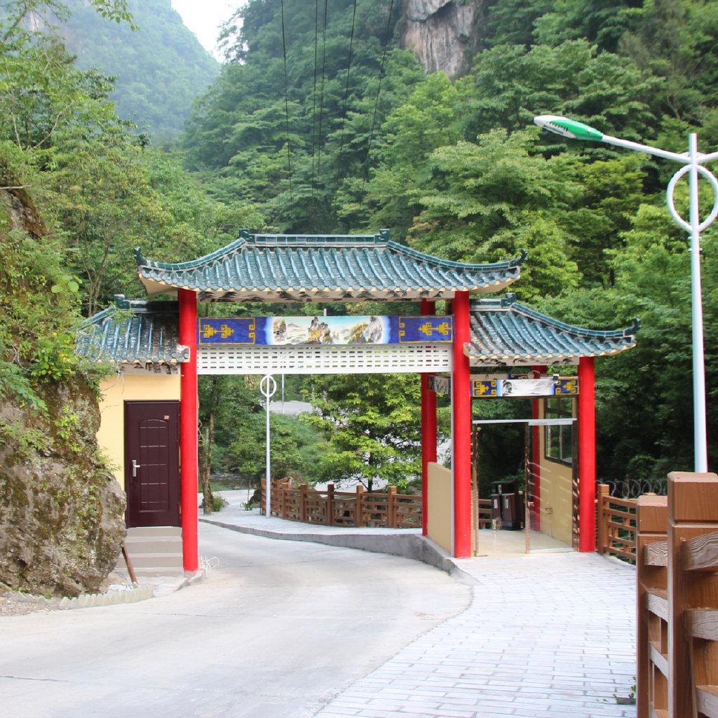 中亚楠木林风景区