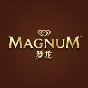 梦龙MAGNUM