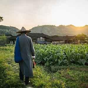 中国诗词大会第四季选手 公众号:山林食纪(forestfood-wu)