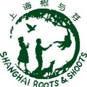 上海根与芽