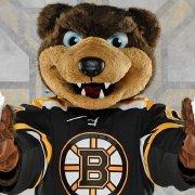 波士頓棕熊_NHLBruins