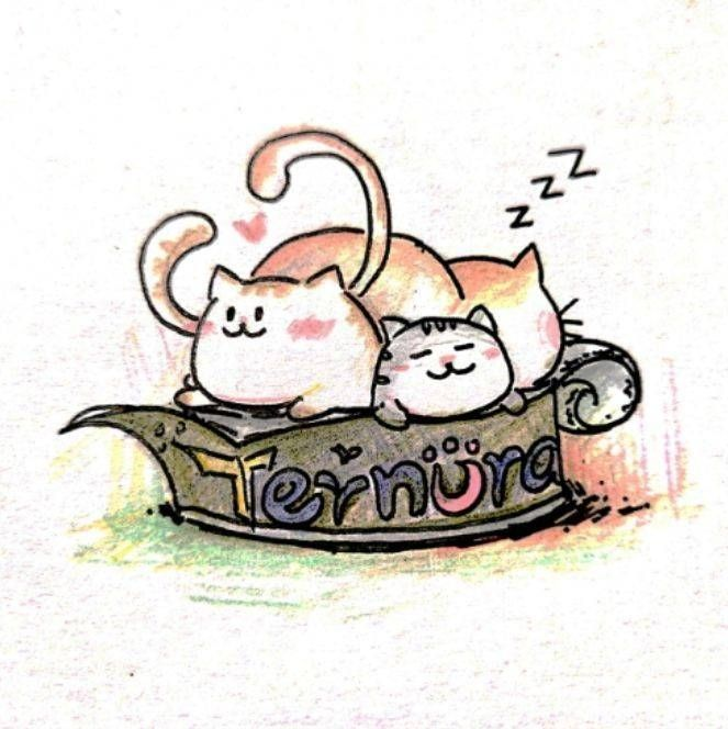 Ternura猫罐头