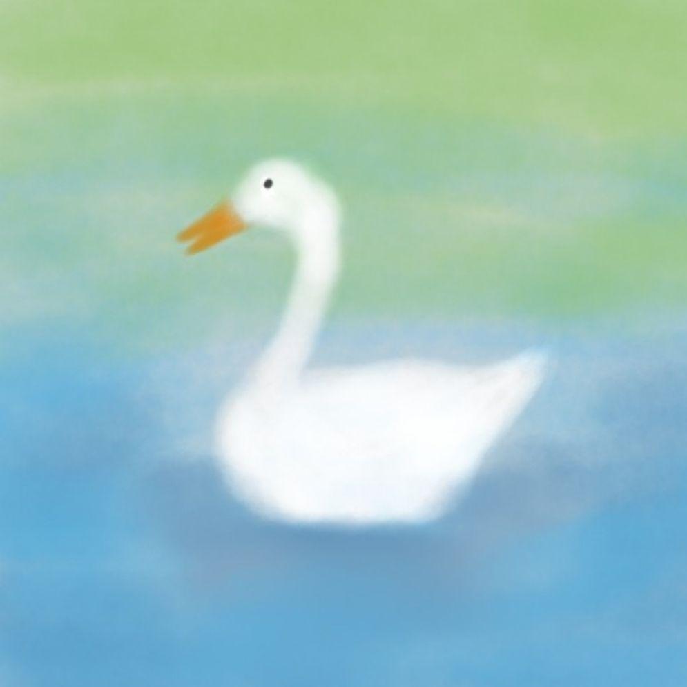 芒的平方_鹅