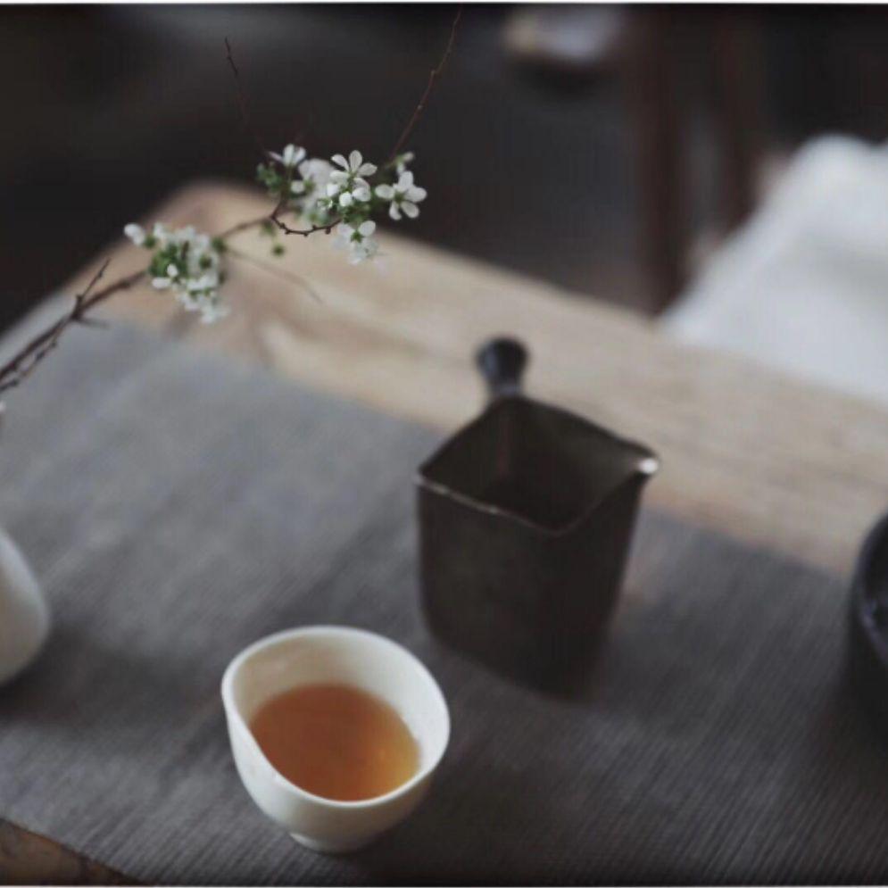 专业,专注茶行业