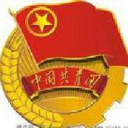 共青团枣庄市委