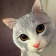 咕噜猫Gluneko