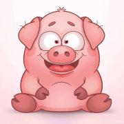 幽默搞笑小猪微博照片