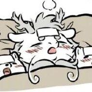 爱睡午觉的猫咔