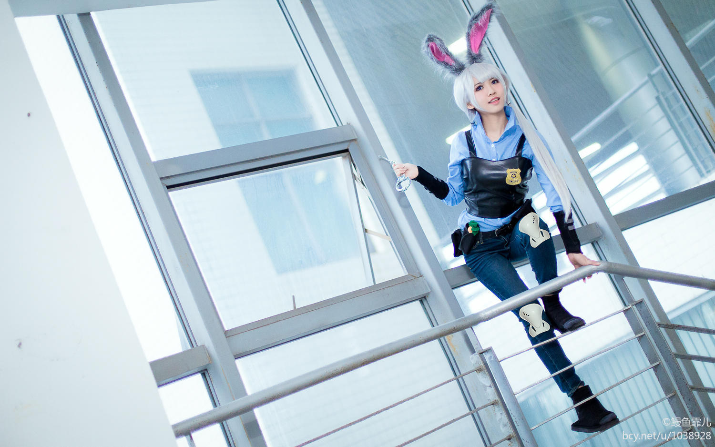 《疯狂动物城》兔子朱迪Judy拟人