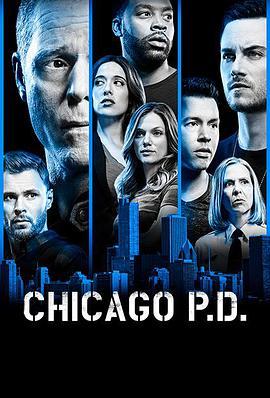 芝加哥警署第六季