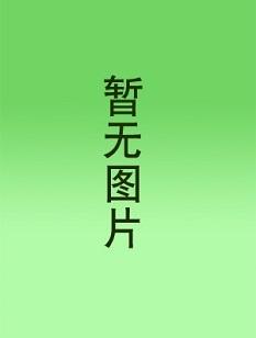 中華神火傳奇