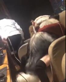 爱福利被狗干了福利视频