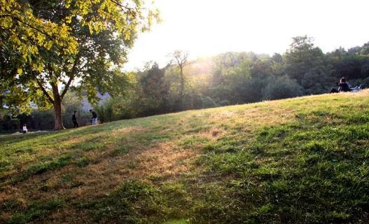 相山公园的那一块画卷般的草坪
