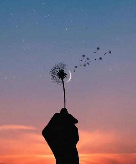 把细碎的烦恼暂停关掉,把月亮挂好,睡个好觉。