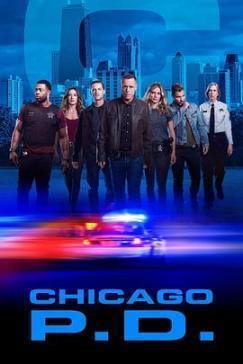 芝加哥警署第七季