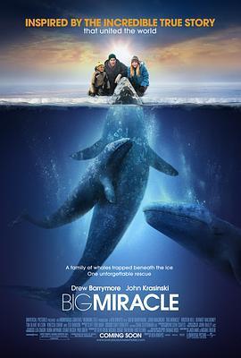巨大奇跡/鯨奇之旅