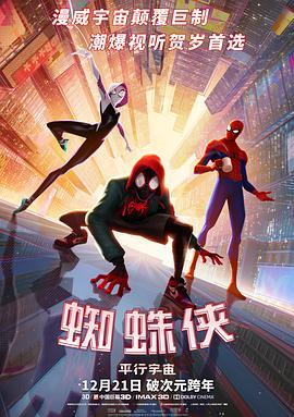 蜘蛛俠:平行宇宙
