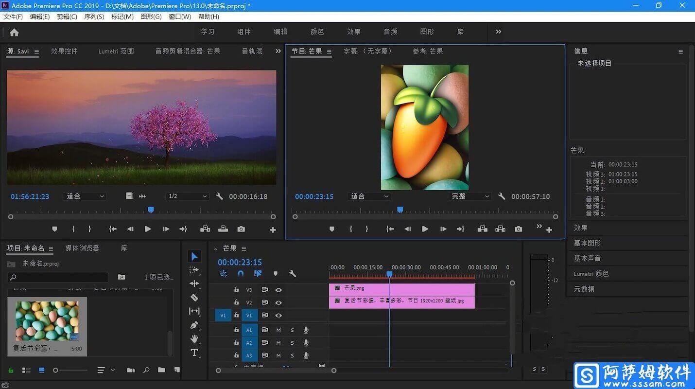 Adobe Premiere Pro for Mac 2019 v13.1.5 中文直装特别版