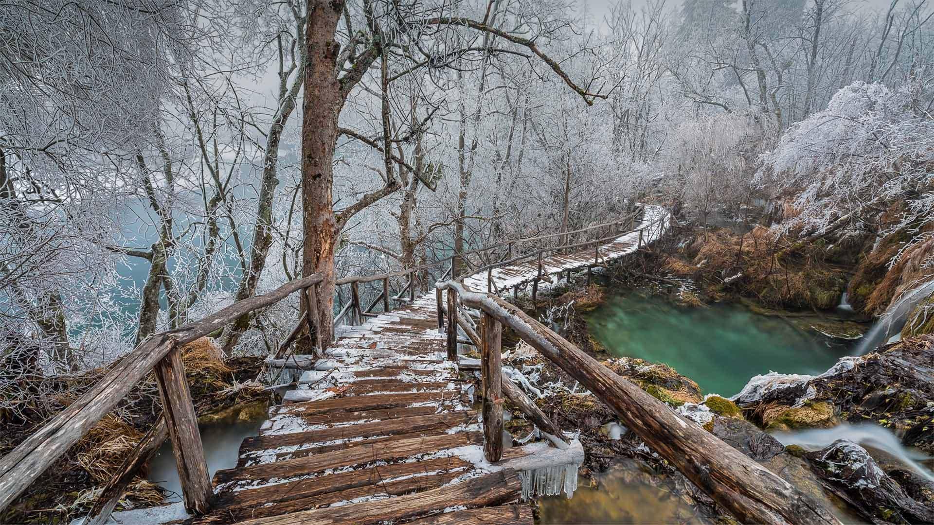 普利特维采湖群国家公园中的高架步道普利特维采湖