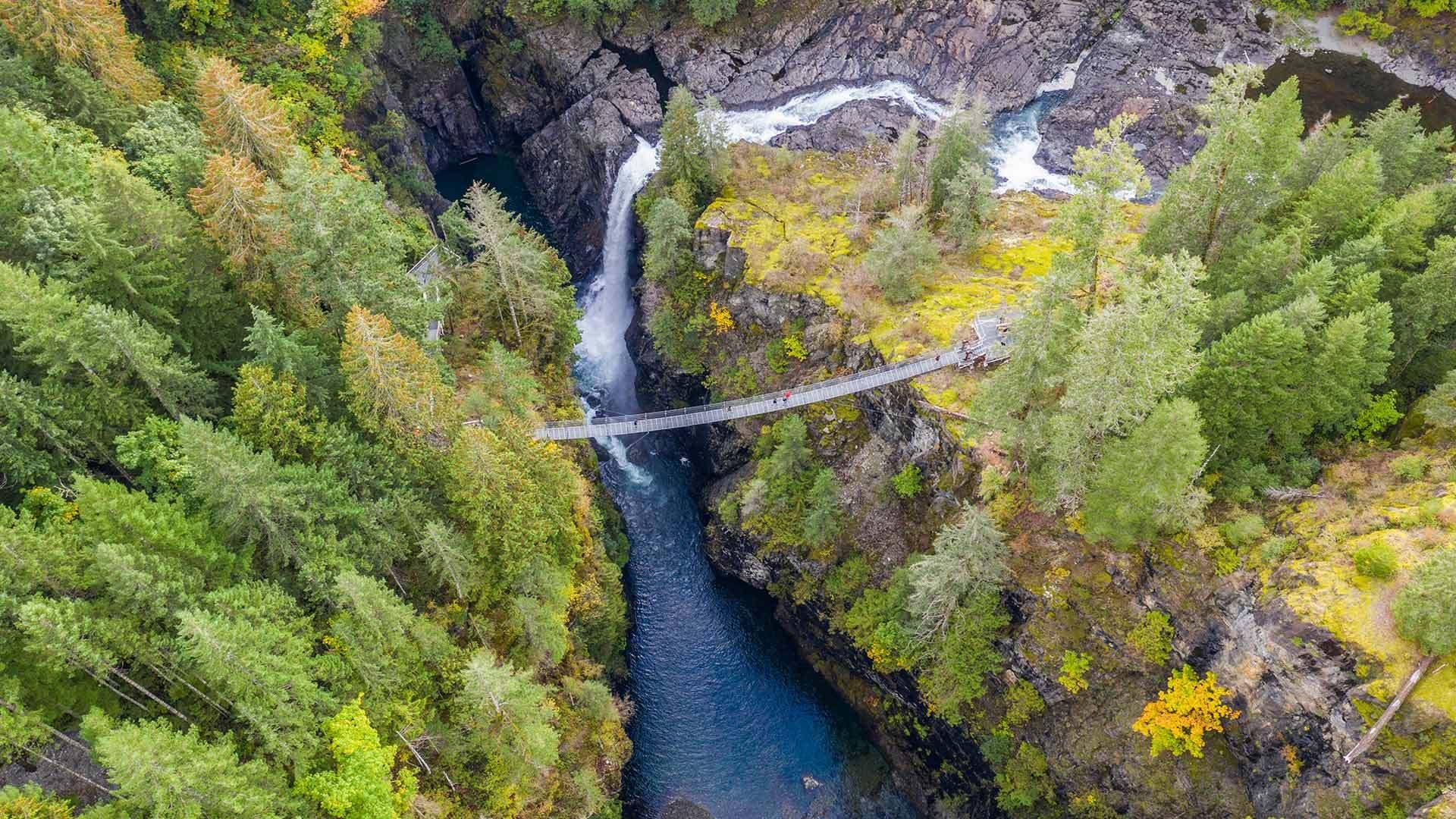 温哥华岛麋鹿瀑布吊桥鸟瞰图