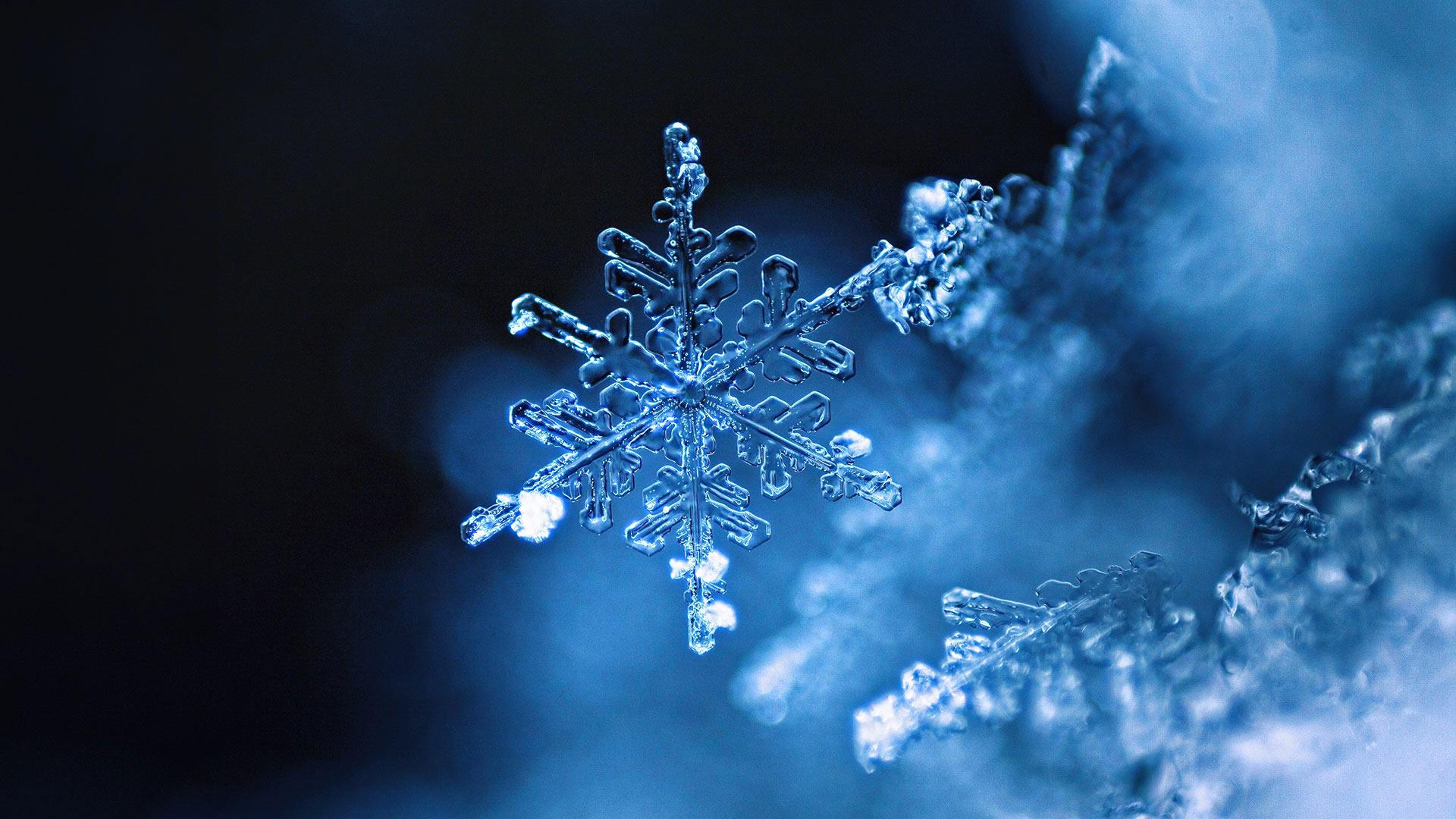 雪花 雪花