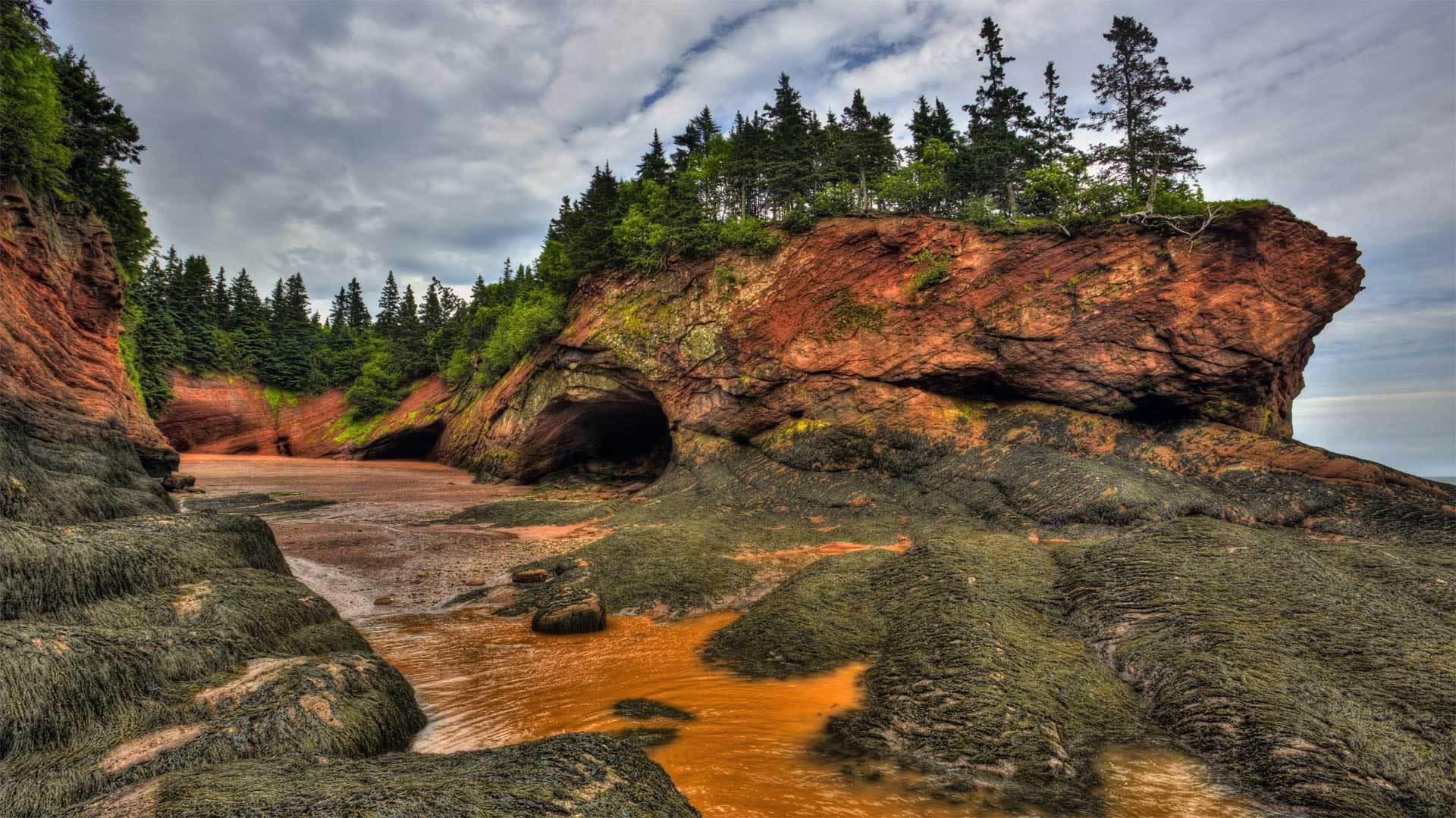 芬迪湾低潮时的洞穴及海岸地貌 芬迪湾