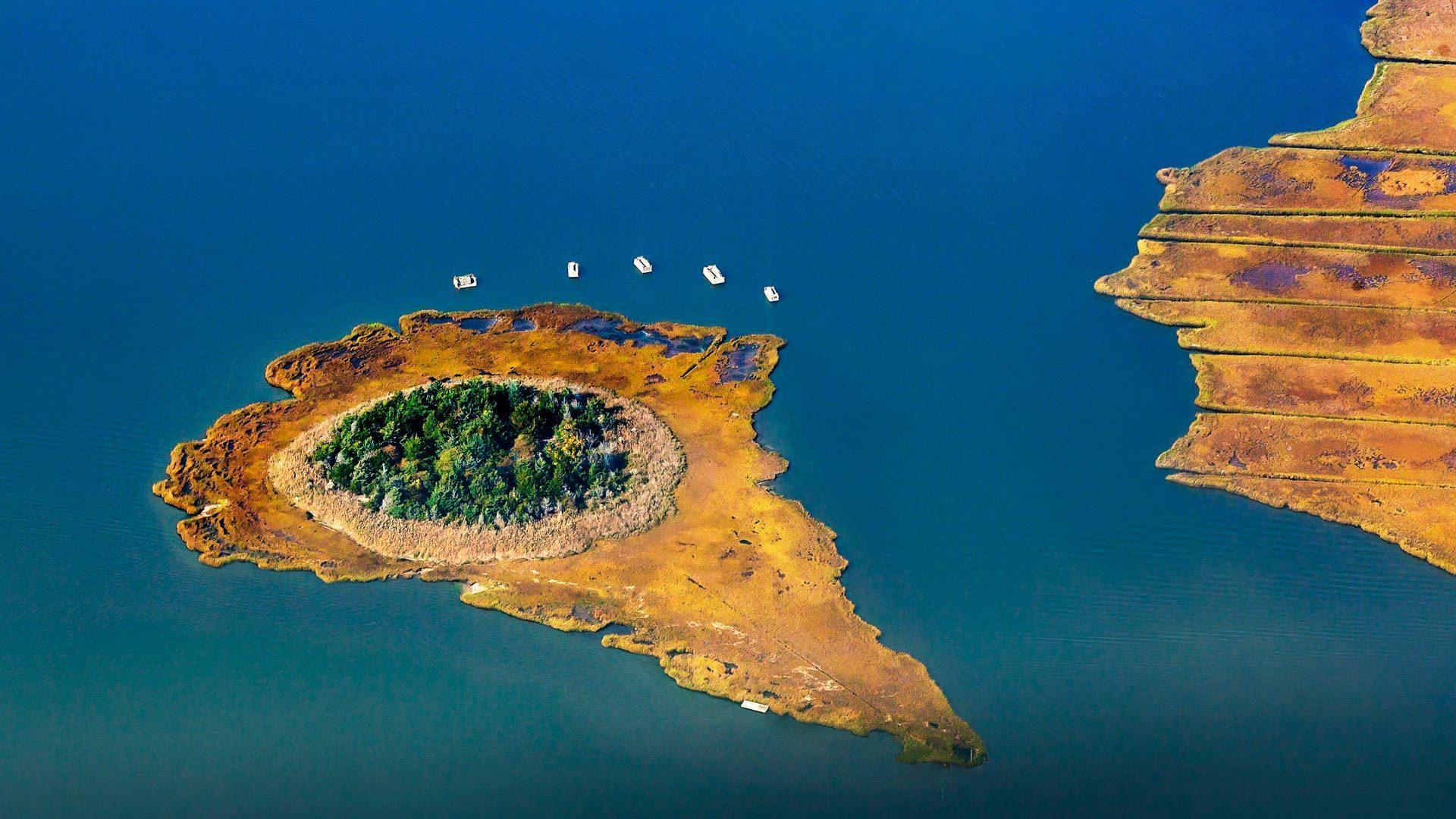 莫尼博克湾的芦苇岛长岛汉普顿海滩