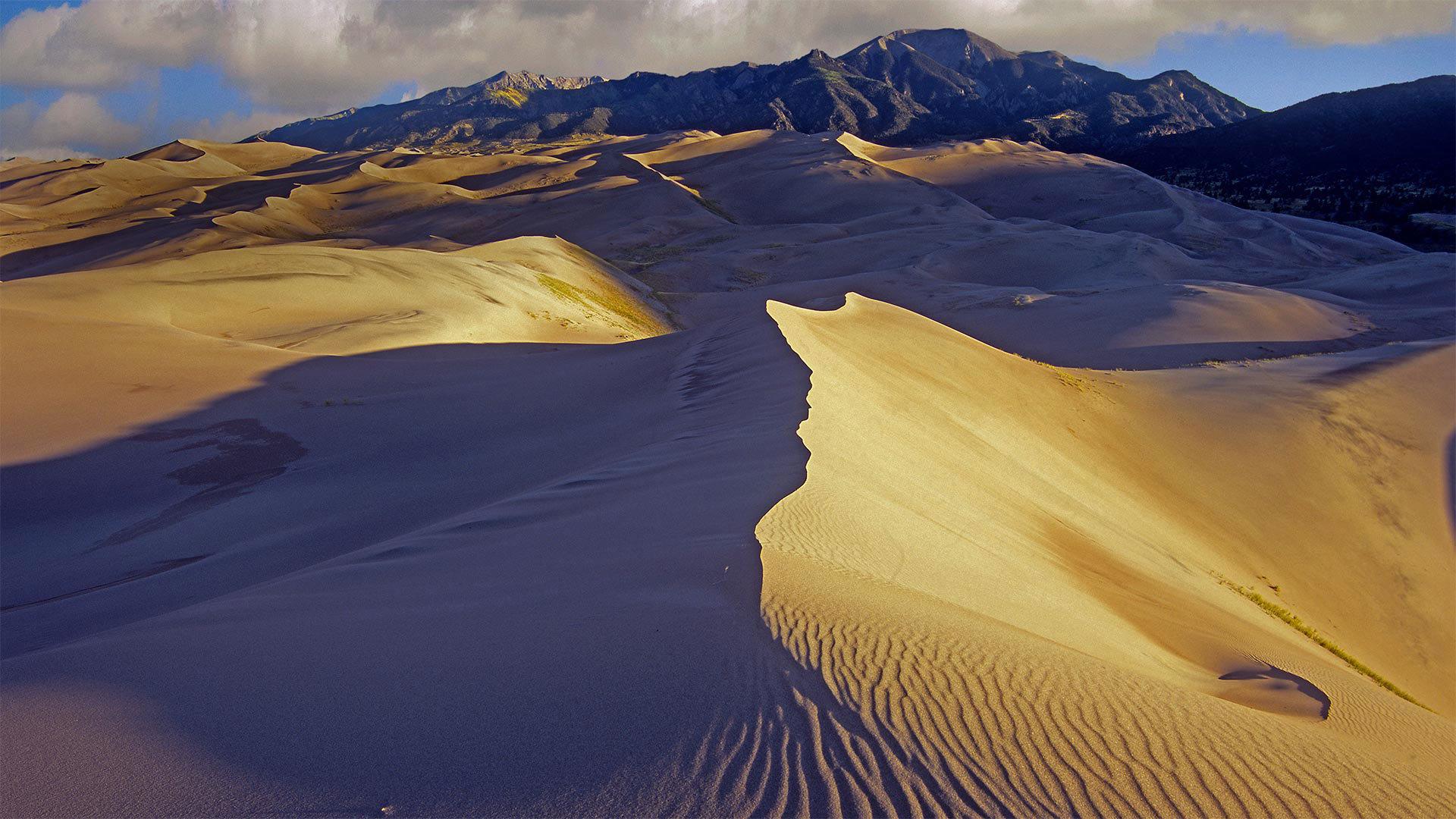以桑格雷-德克里斯托山为背景的沙丘大沙丘国家公园