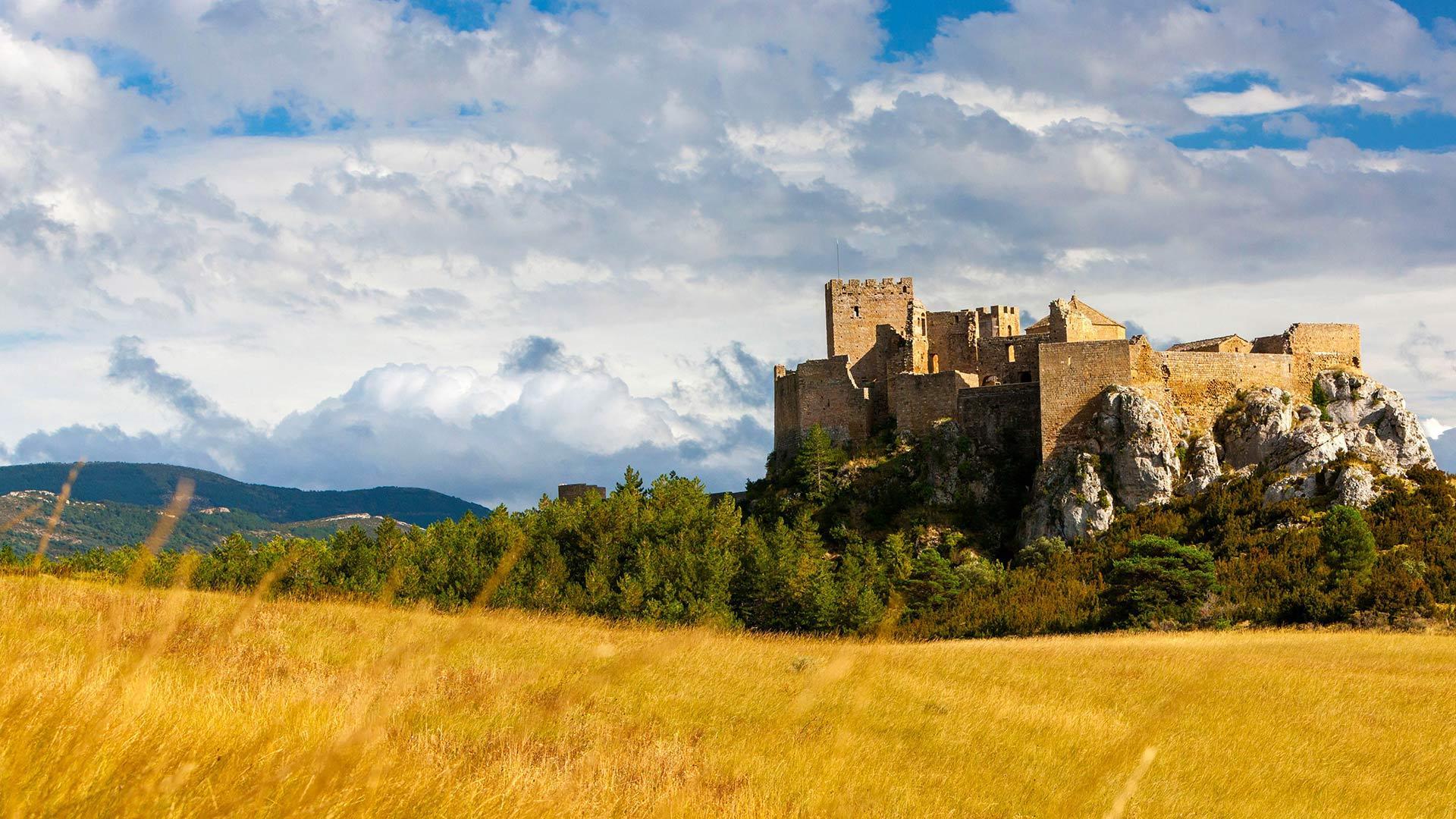 洛阿雷城堡洛阿雷城堡