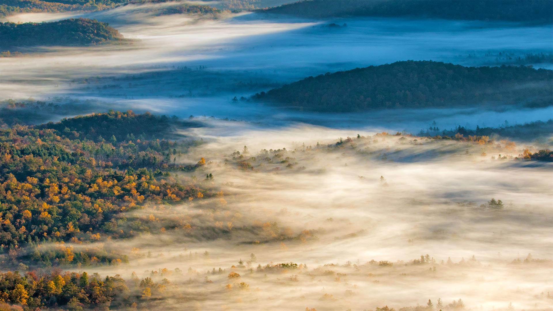 布里瓦德附近的皮斯加国家森林皮斯加国家森林