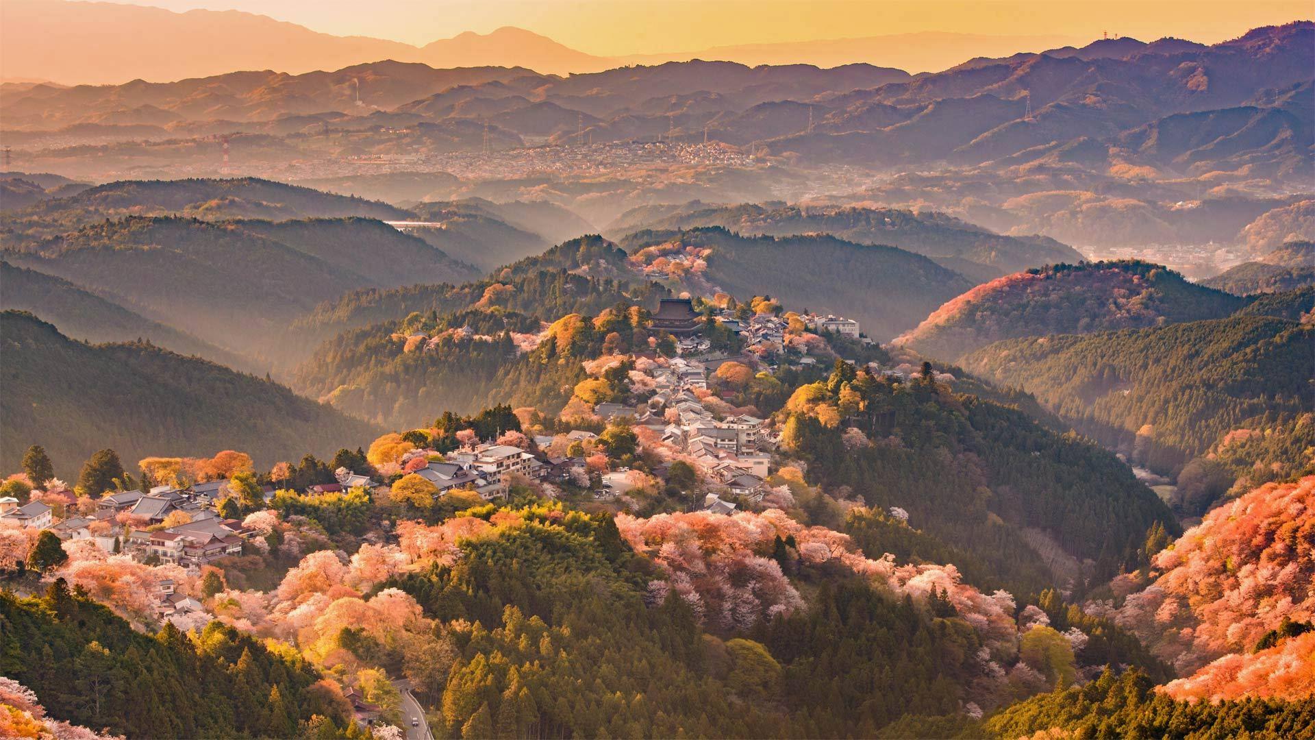 春天的吉野山吉野山