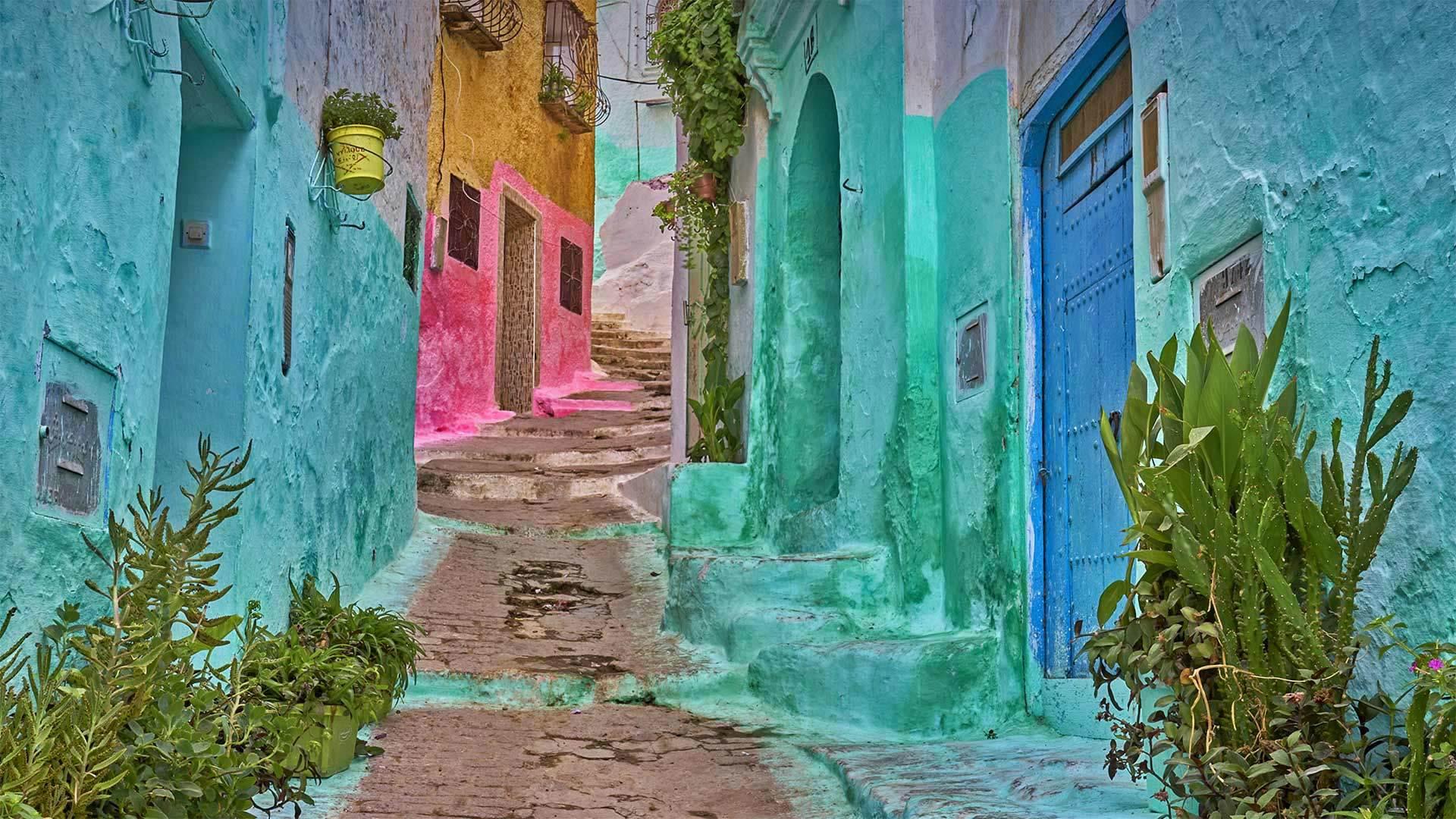 麦地那的彩色小巷摩洛哥