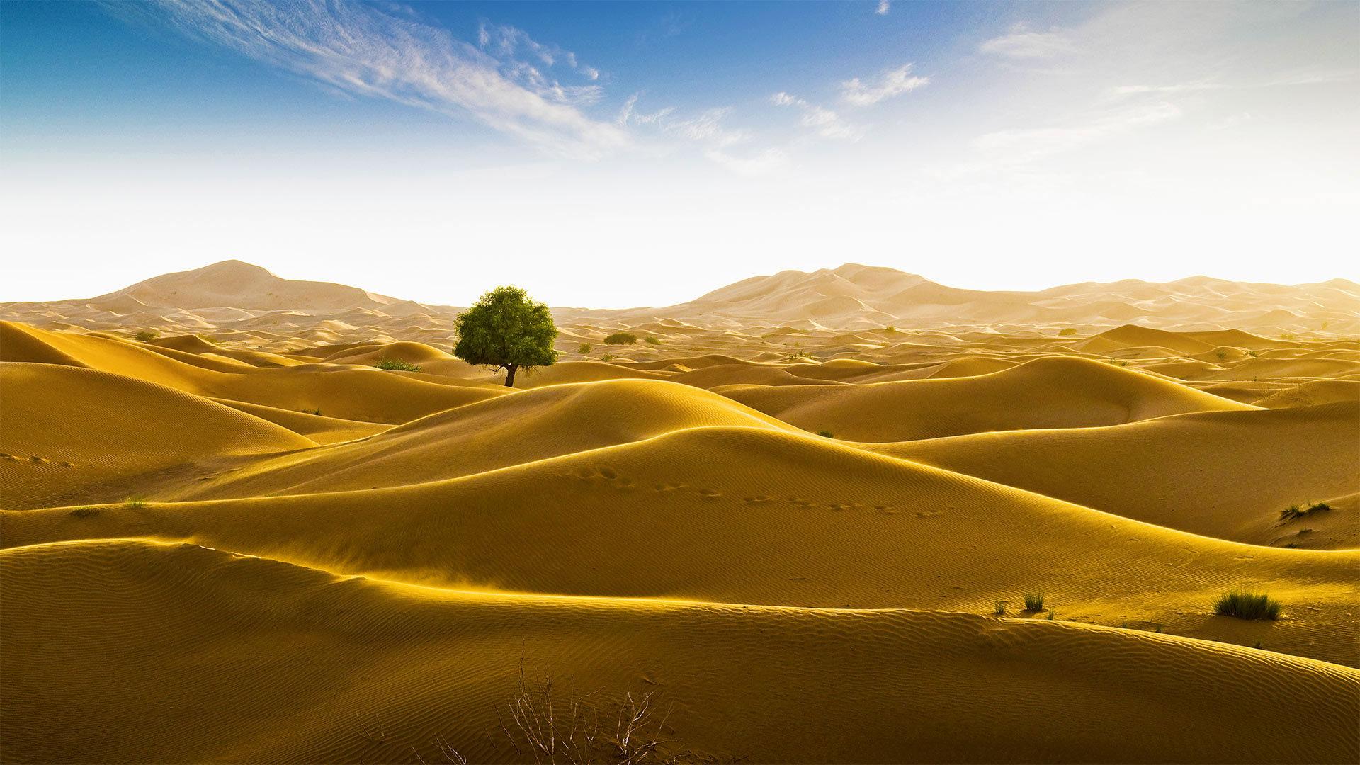 位于阿曼和迪拜酋长国边界的鲁卜哈利沙漠 鲁卜哈利沙漠