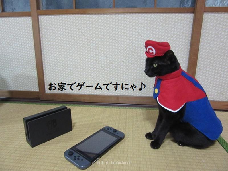 日本黑猫动画角色COS_和邪社14