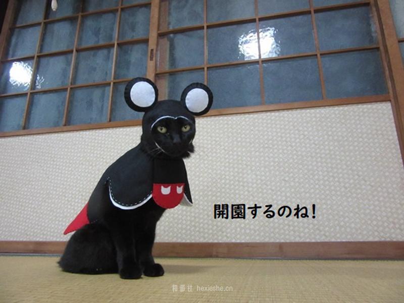 日本黑猫动画角色COS_和邪社21