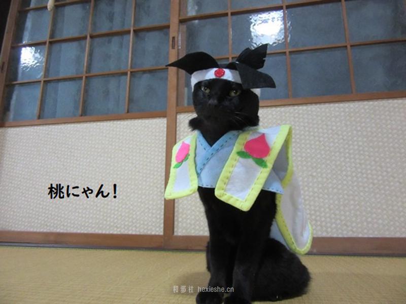 日本黑猫动画角色COS_和邪社22