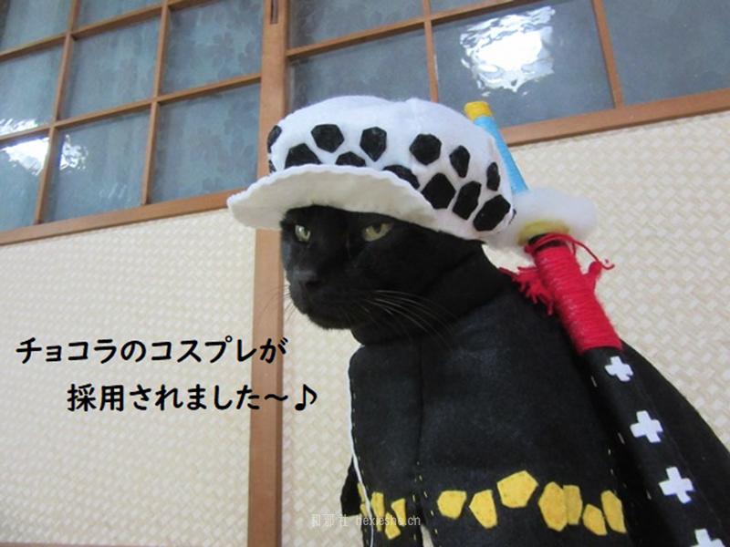 日本黑猫动画角色COS_和邪社24