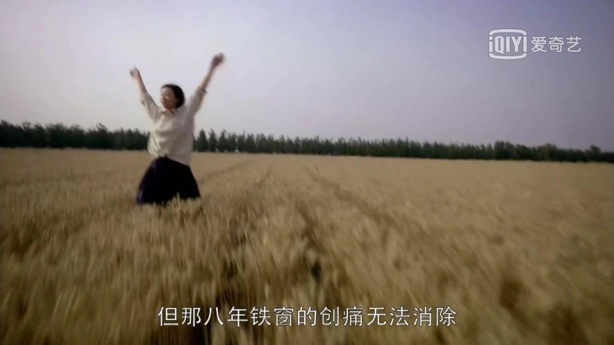 电视剧《人间正道是沧桑》在大时代洪流下的那些微不足道的小情绪 (8)
