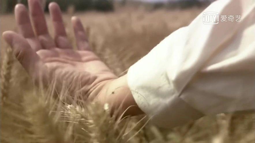 电视剧《人间正道是沧桑》在大时代洪流下的那些微不足道的小情绪 (10)