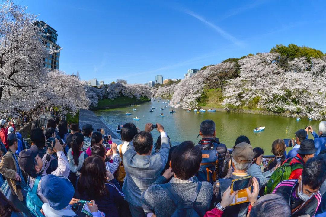 盘点日本旅行一年四季最佳时间避免堵在路上遇到囧途 (17)