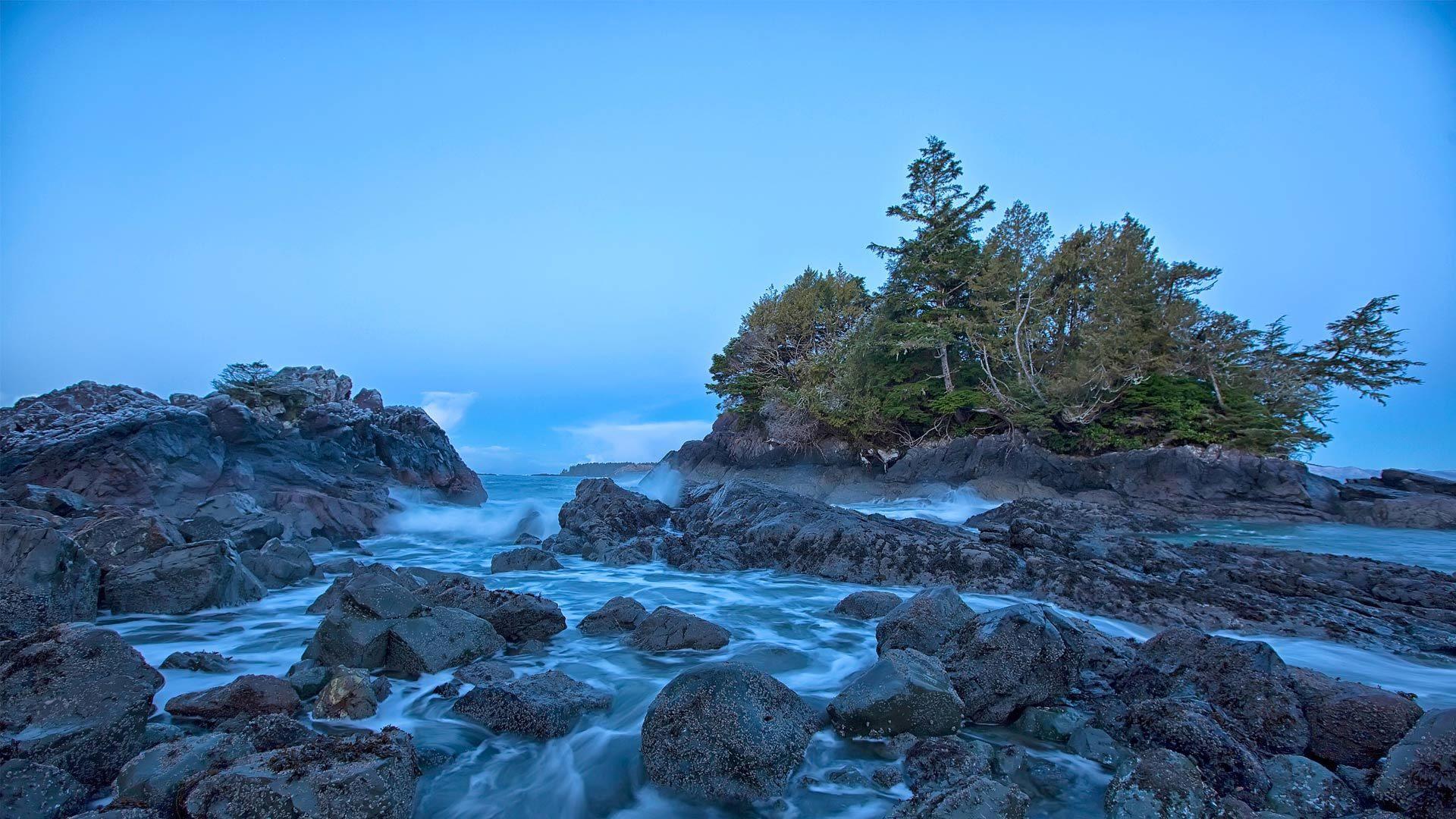 温哥华岛托菲诺附近的海岸线