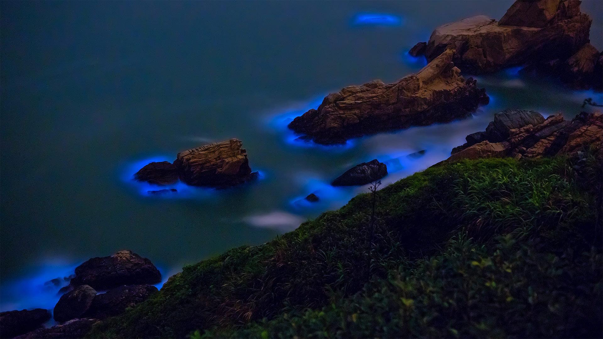 妈祖群岛沿岸的发光藻类