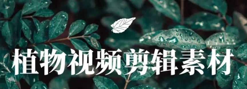 高清植物视频剪辑无字幕素材百度云下载