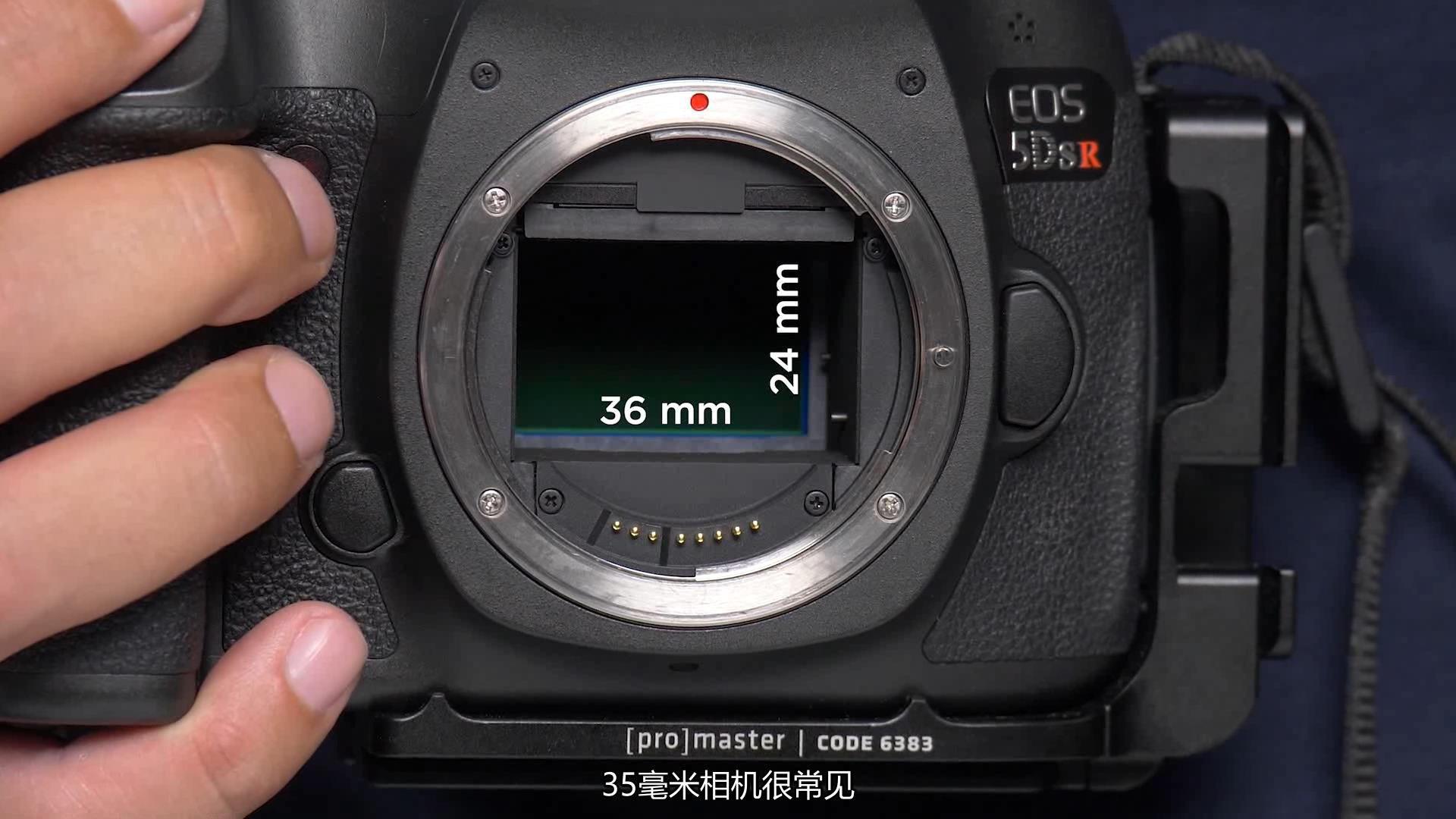 摄影教程_Fstoppers-Andres Moline精通微距摄影完整拍摄及后期教程中文字幕 摄影教程 _预览图8