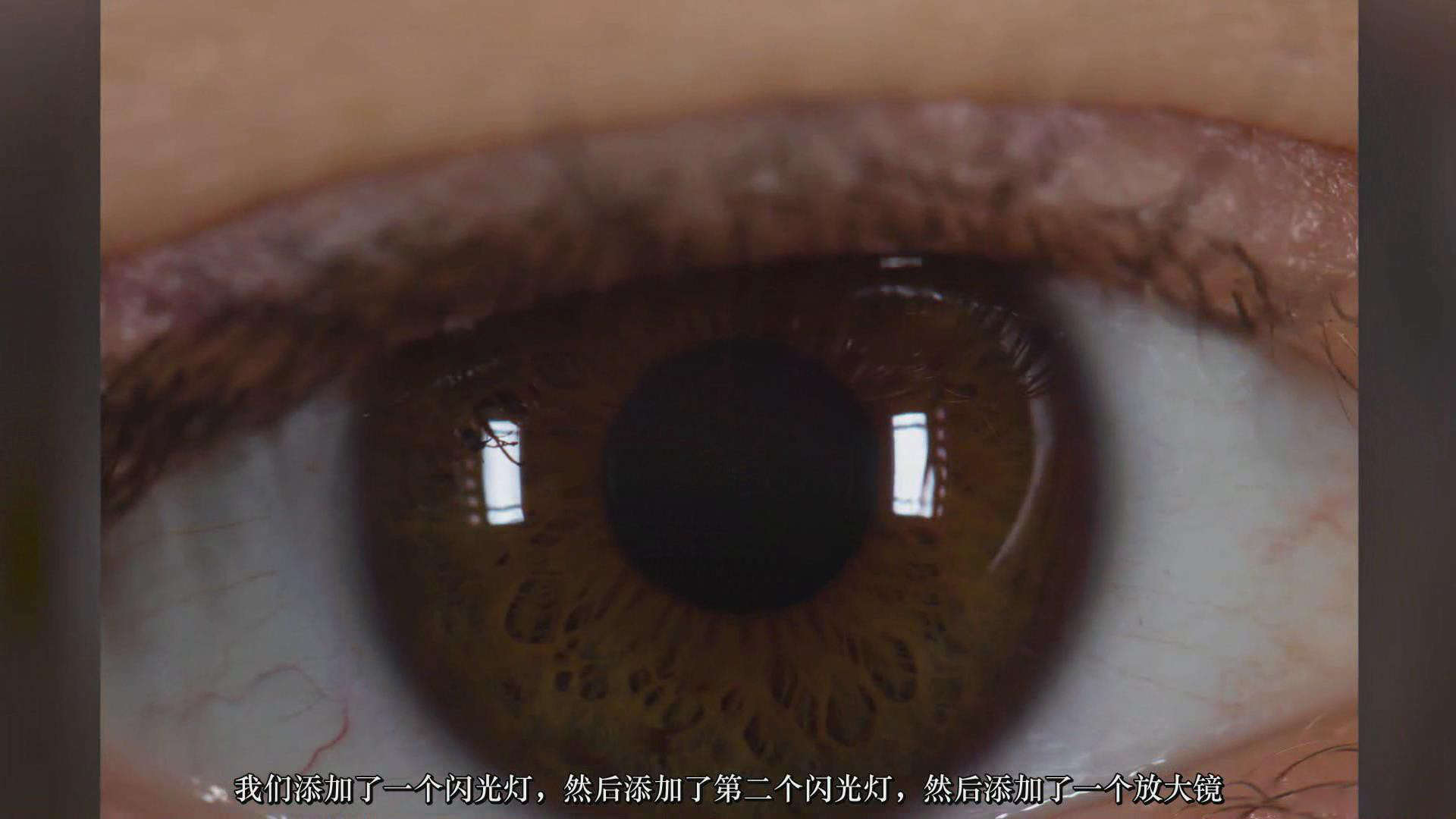摄影教程_JOSHUA DUNLOP-掌握宏观微距摄影-捕捉惊人的细节-中文字幕 摄影教程 _预览图11