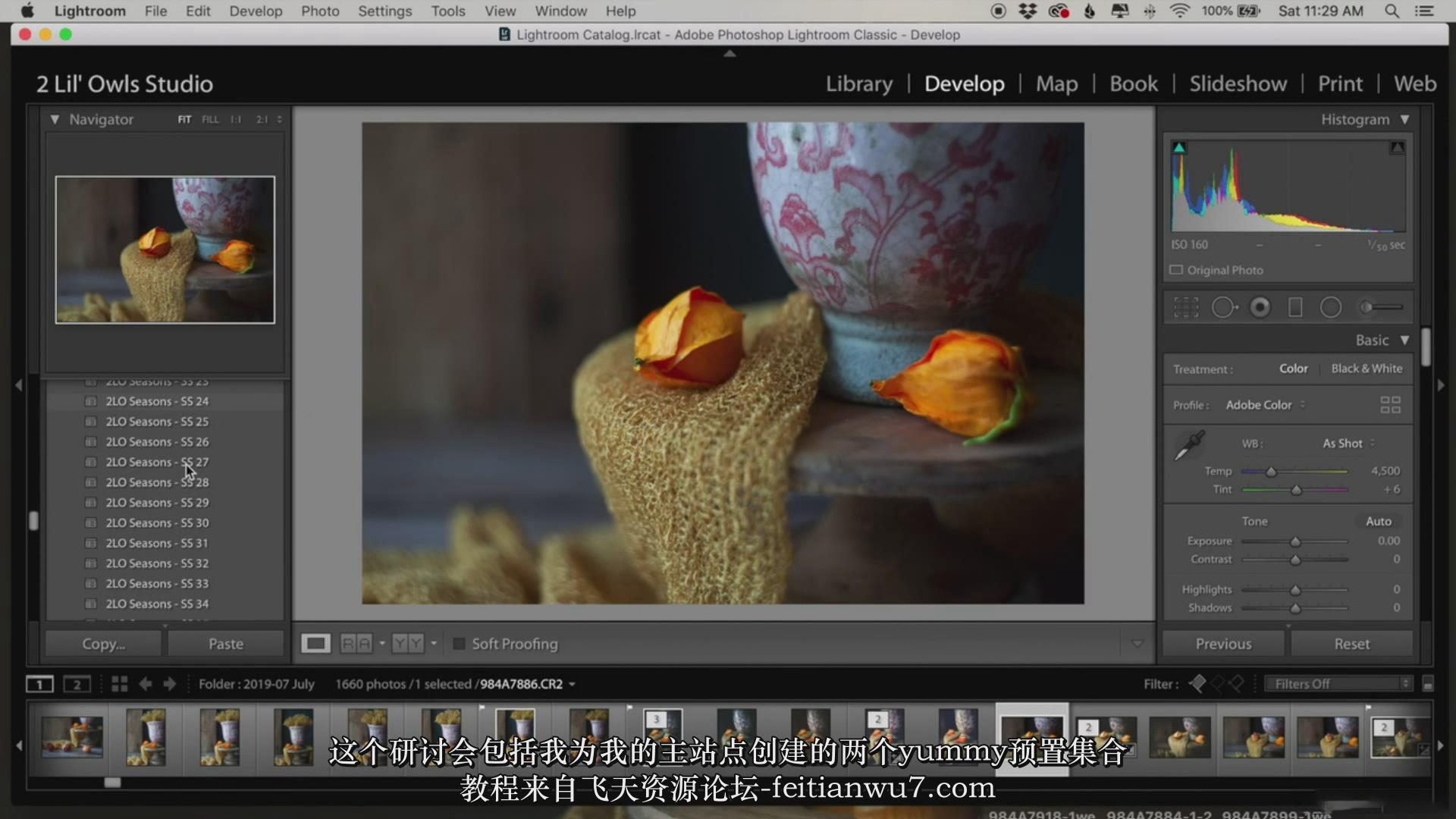 摄影教程_Lenslab –静物花卉产品摄影掌握色彩突破艺术界限研讨会-中文字幕 摄影教程 _预览图10