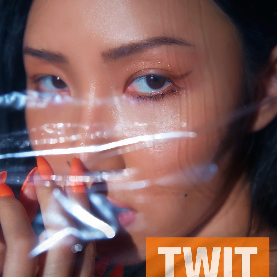 MAMAMOO华莎SOLO曲推出,MV里抢镜的「这两位」引起网友关注!插图