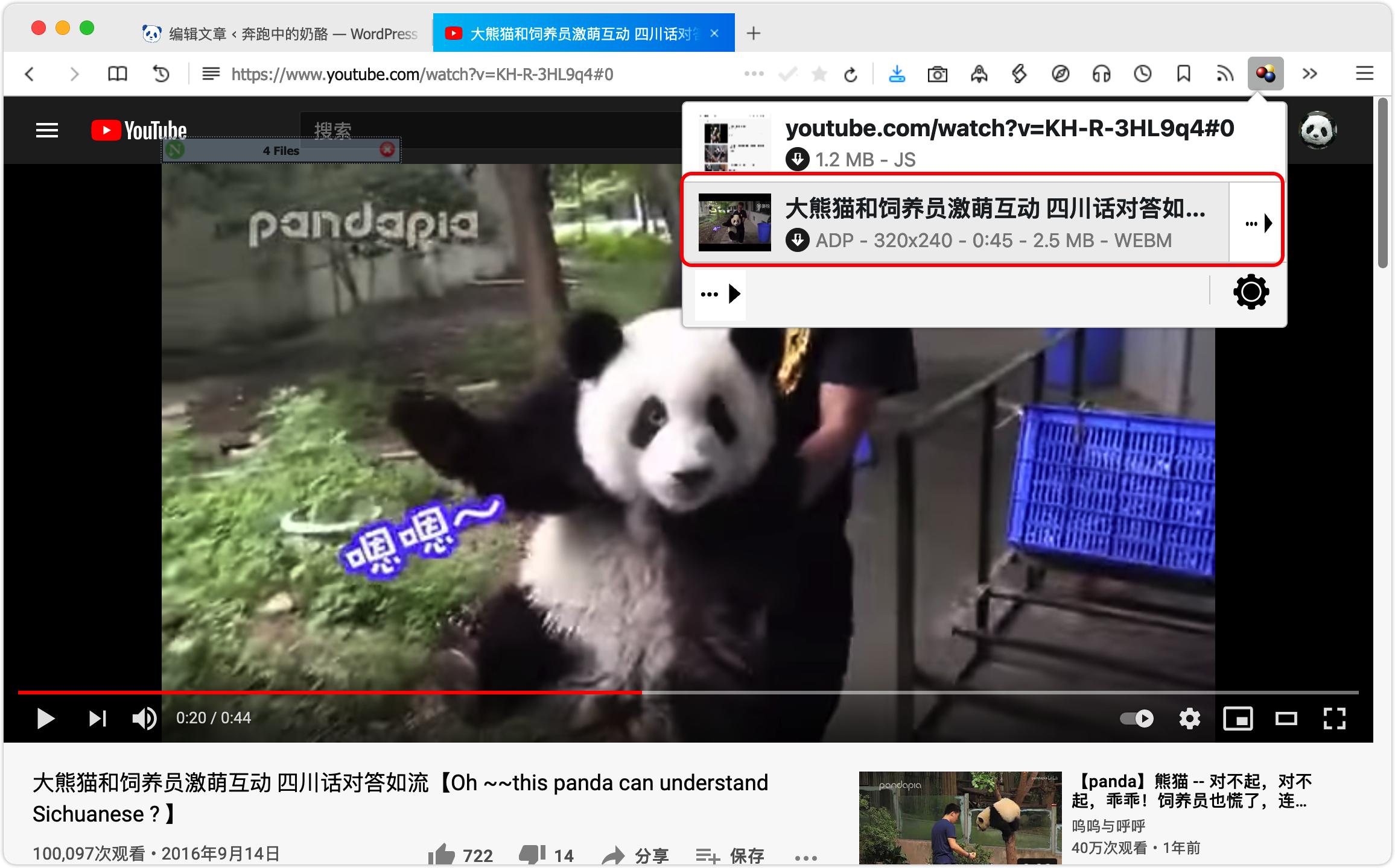 i14_浏览器拓展